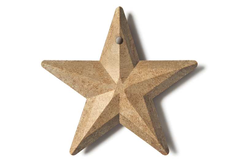 FS_Seedstar